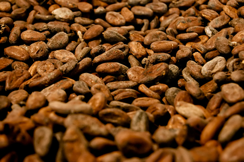 Post image for Can cocoa boost your heart health?