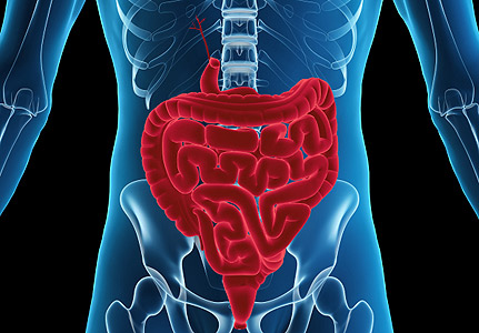 Post image for 9 Surprising Facts About Your Stomach