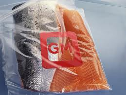 Post image for FDA says GM fish are safe to eat, no evidence to prove it