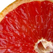 Post image for Grapefruit compound could treat diabetes, lower cholesterol and produce Atkins diet benefits without dieting